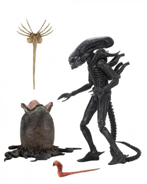 Alien 1979 - Actionfigur Ultimate - Big Chap (40th Anniversary)