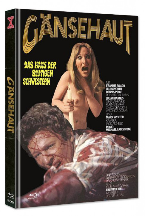 Gänsehaut - The Haunted House of Horror - Eurocult Collection #064 - Mediabook - Cover B [Blu-ray+DVD]