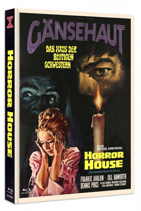 Gänsehaut - The Haunted House of Horror - Eurocult Collection #064 - Mediabook - Cover C [Blu-ray+DVD]