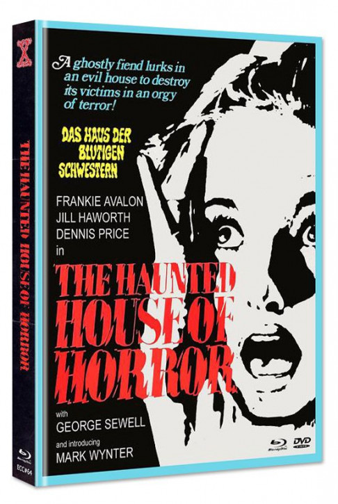 Gänsehaut - The Haunted House of Horror - Eurocult Collection #064 - Mediabook - Cover D [Blu-ray+DVD]