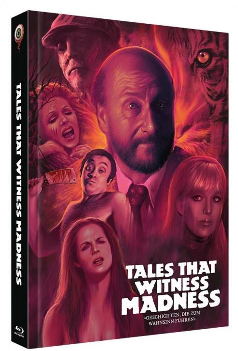 Geschichten die zum Wahnsinn führen - Limited Collectors Edition - Cover B [Blu-ray+DVD]