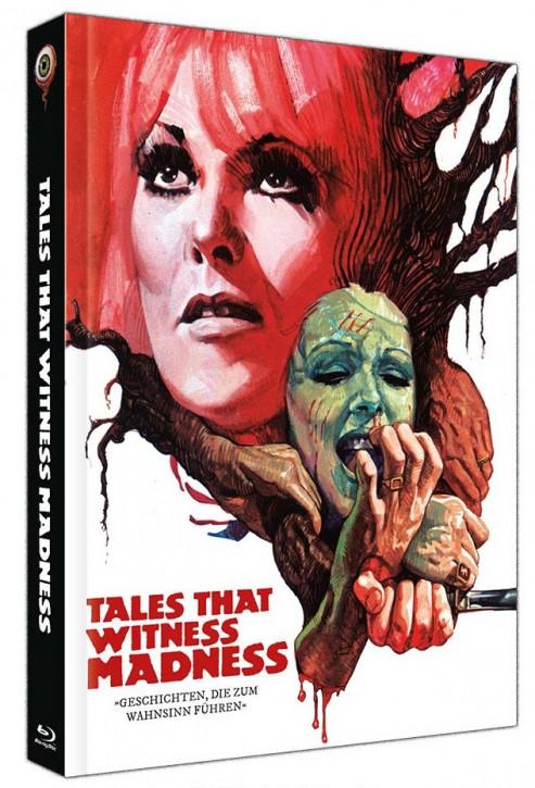 Geschichten die zum Wahnsinn führen - Limited Collectors Edition - Cover C [Blu-ray+DVD]