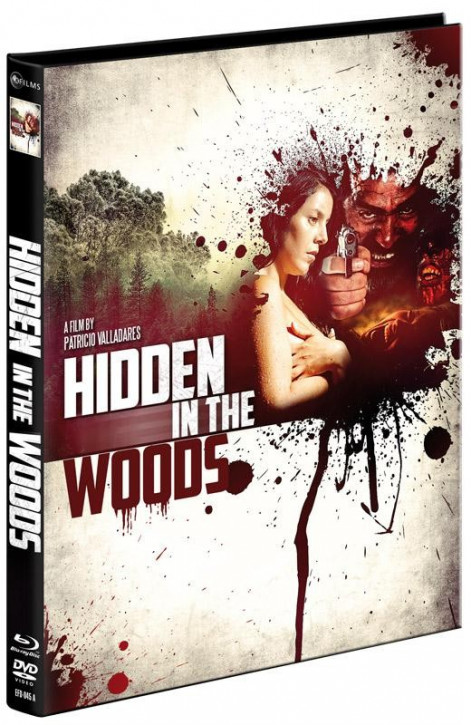 Hidden In the Woods - Limited Mediabook Edition - Cover A [Blu-ray+DVD]