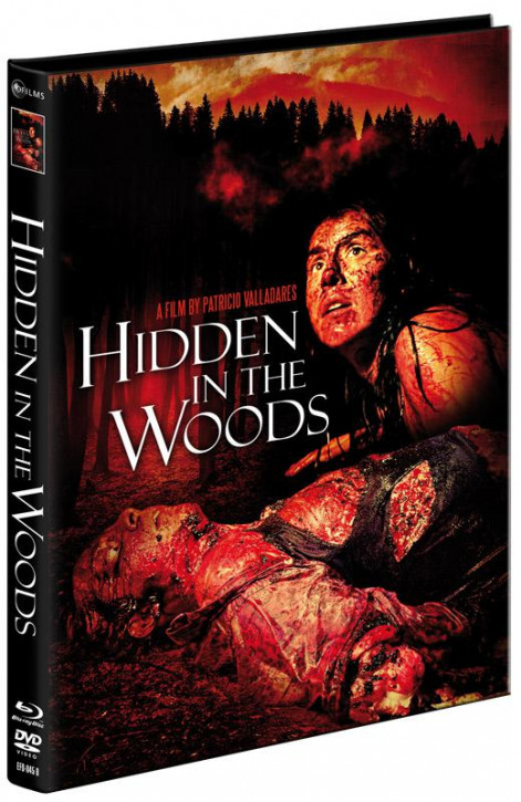Hidden In the Woods - Limited Mediabook Edition - Cover B [Blu-ray+DVD]