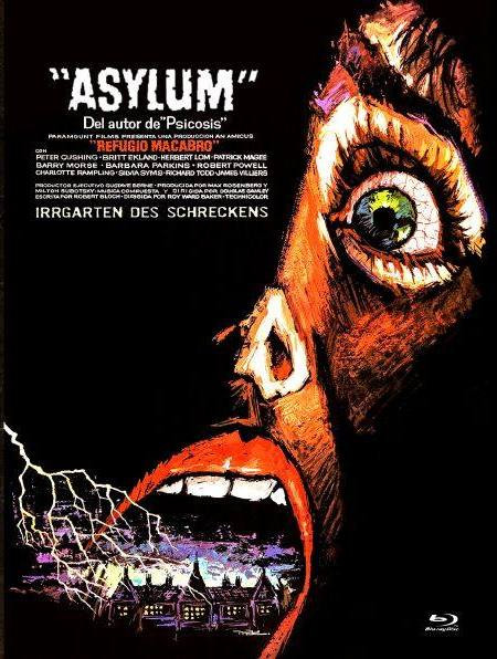 Asylum - Euro Cult Collection #53 - Mediabook - Cover D [Blu-ray+DVD]