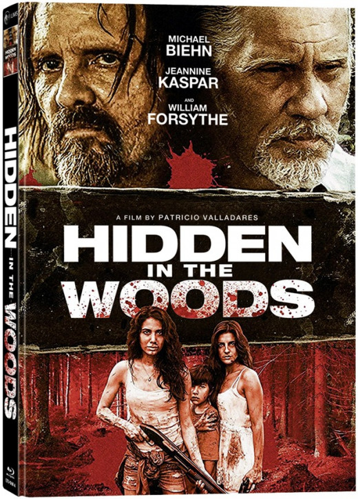 Hidden in the Woods (2014) - Mediabook - Cover A [Blu-ray+DVD]