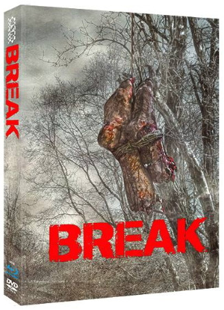 Break - Limited Collector's Edition - Cover D [Blu-ray+DVD]